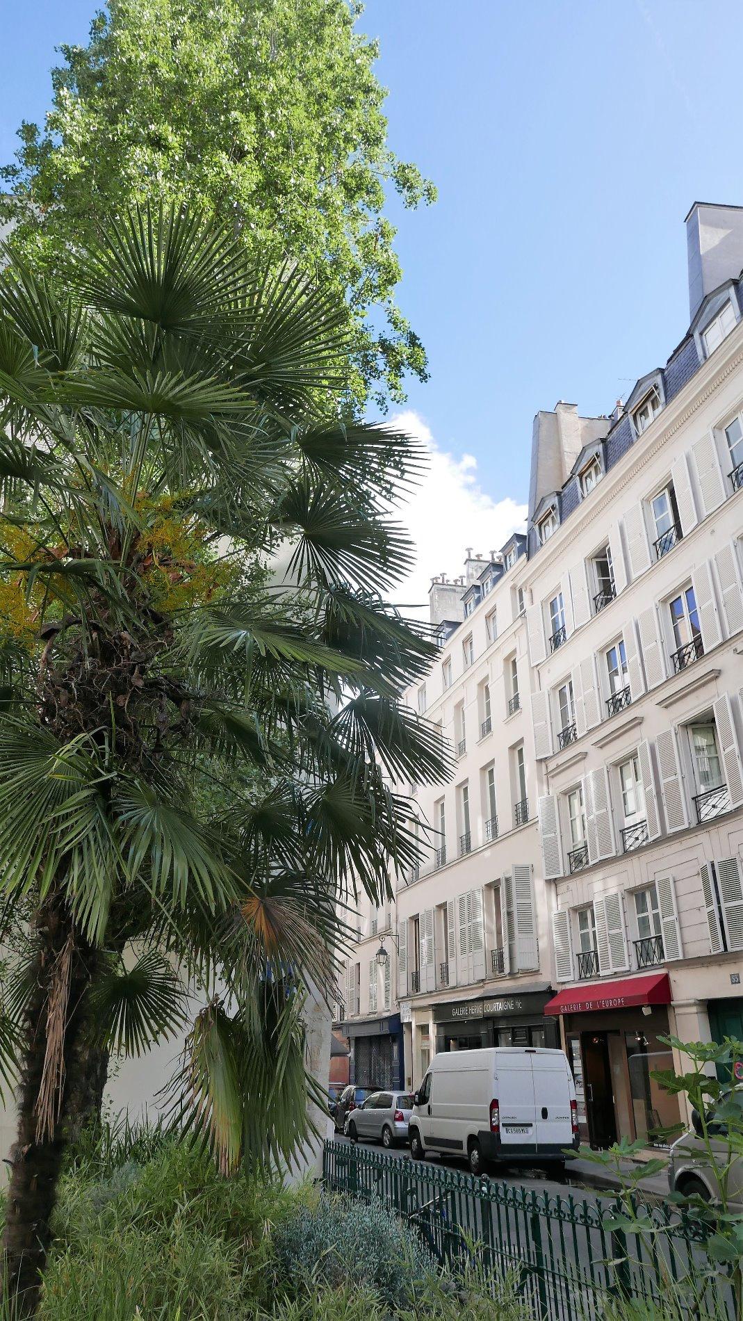 Royalimmo agences immobili res paris 16 me et paris 6 me for Agence immobiliere 6eme arrondissement paris